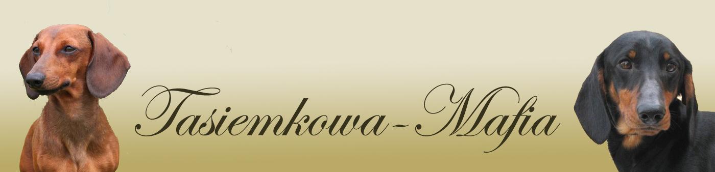 Tasiemkowa-Mafia