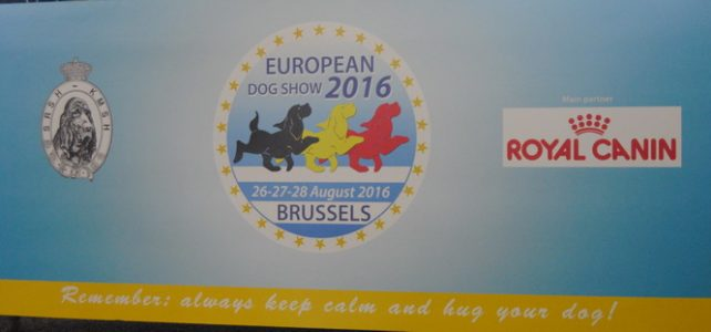 European Dog Show Brussels 2016