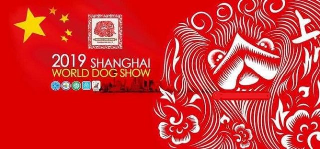 World Dog Show Shanghai 2019