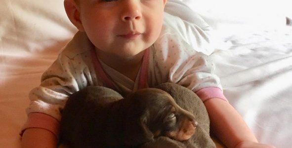 Les bébés – 27 mai